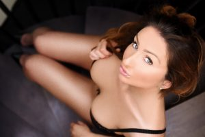 Rebeca Party Brunette Escort